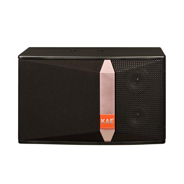 英国KAE专业娱乐K歌音箱-KB16-10寸卡包音箱